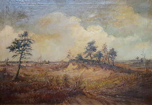 WS00118, Kunstenaar onbekend, heidegezicht