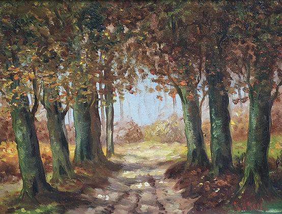 C3964, P. van de Horst, bospaadje