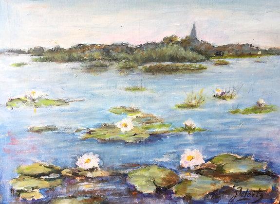 A7659, Max Waitz, Waterlelies op de plas, met zicht op kerkje Kortenhoef