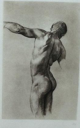 C5124-4, Mannelijk torso