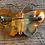 Thumbnail: Vlinderbroche, emaille, door David Andersen