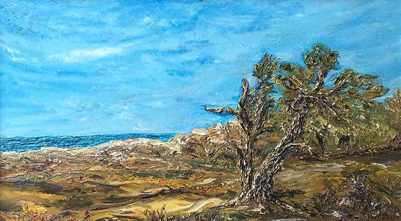 C4165-3, Kunstenaar onbekend, Duinlandschap met zeegezicht