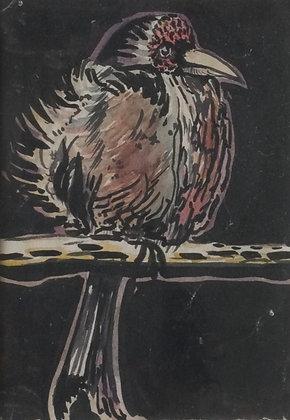 A4145, Vogeltje, aquarel en inkt op papier