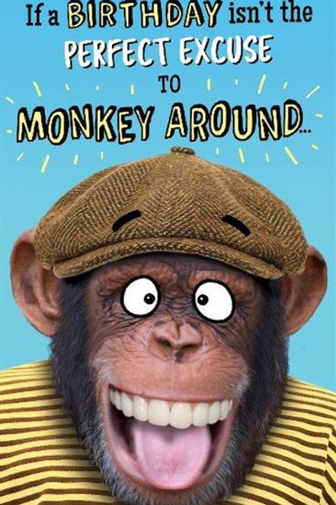 Just a Laugh - Monkey Around