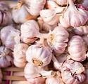 Garlic_small.jpg