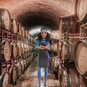 Bordeaux Wine Cave