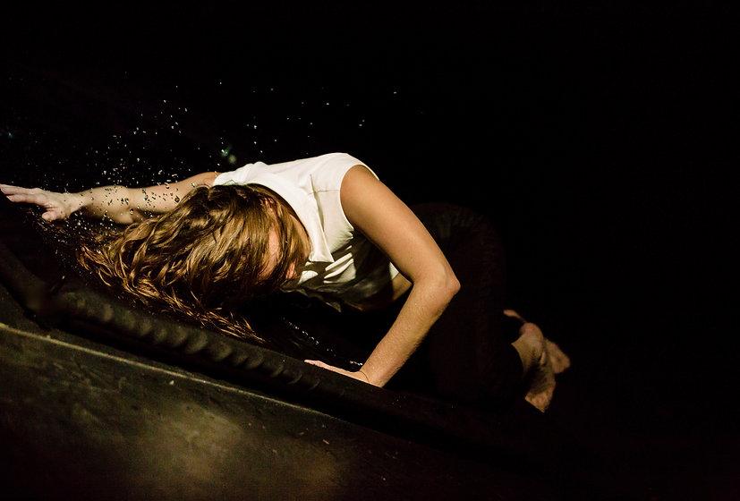2458_gorini_show_corrida_danse copie.jpe