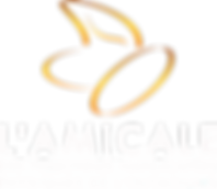 LogoAmicaleCoulVectTop-lettre blanche.pn