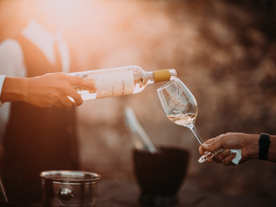 Top Wine and Cava Tasting Tours near Barcelona to Experience in 2021