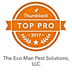 Pest Control Services | Durham NC | Eco Man Pest Solutions