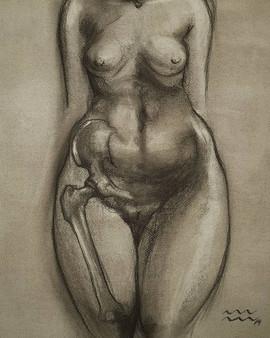 Study of hip girdle