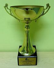 Marvel Harvest Ltd, Hong Kong Building & Waterproofing Contractor, HKCRA Award for Excellence 2007 / 2008