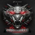 SSY021 Crossbreed