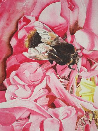 Marion Wagstaff Humble Bee IMG_7042.JPG