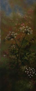 Hedgerow Parsley  30 cm x 80 cm Oil  Pat