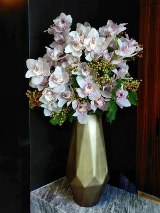 Cymbidum orchid front desk display