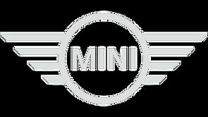 black_mini-removebg-preview.png
