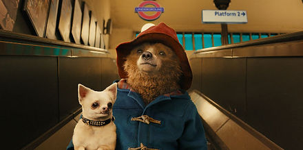 paddington the movie