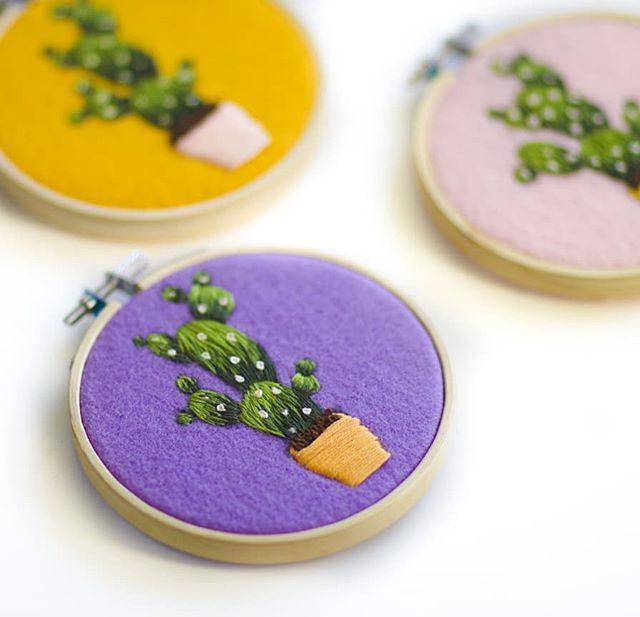 my lil bunch of cacti ♥️🌵.jpg