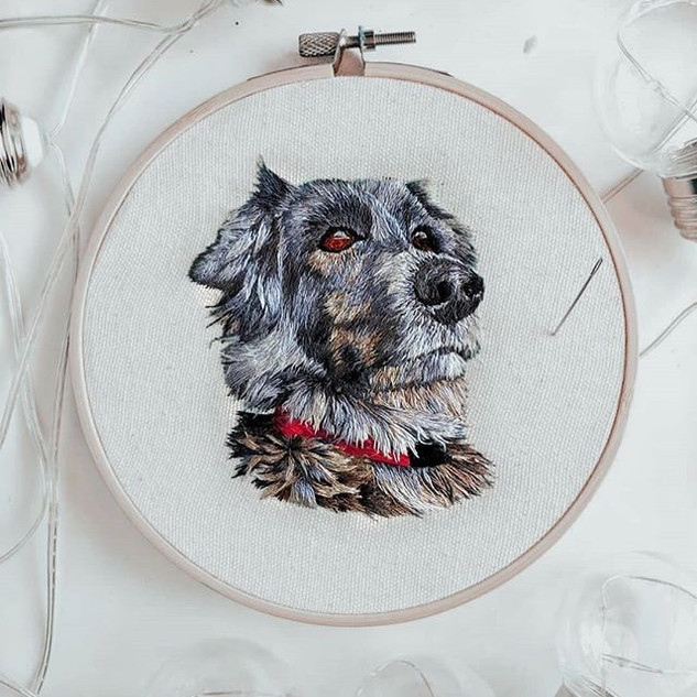 🐾 old hoop for a new day! 🐾.jpg
