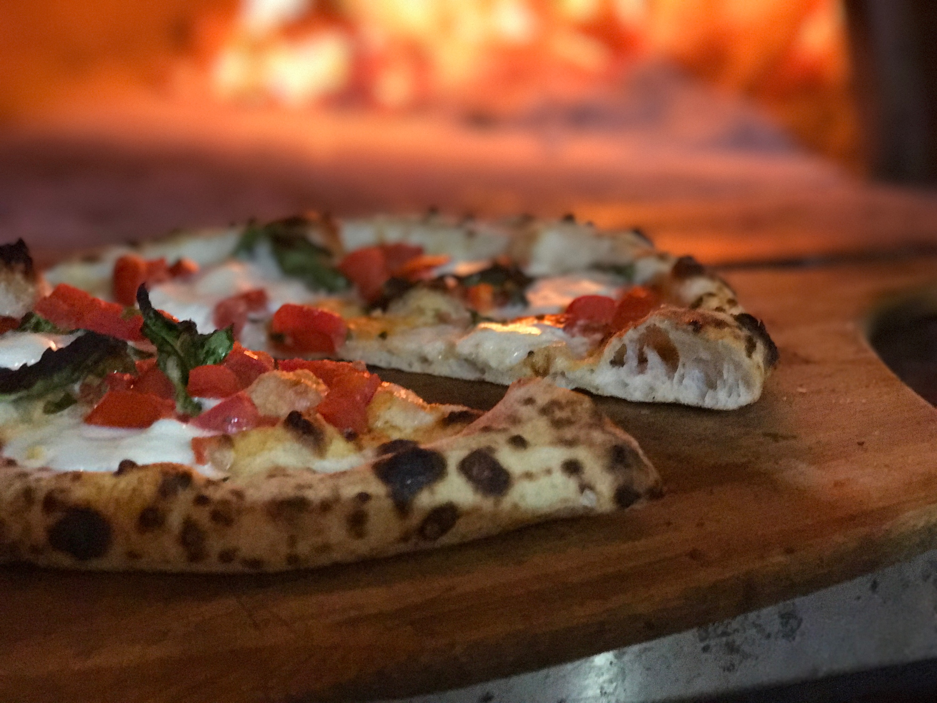 Wood Fired Pizza crust