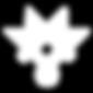 maestro medak logo