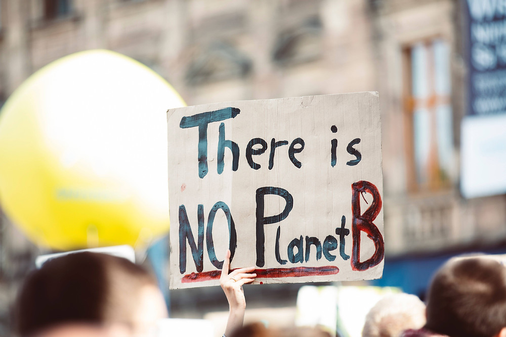Climate Emergency | There is no Planet B Sign
