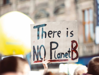 The Climate Emergency: Where To From Here?