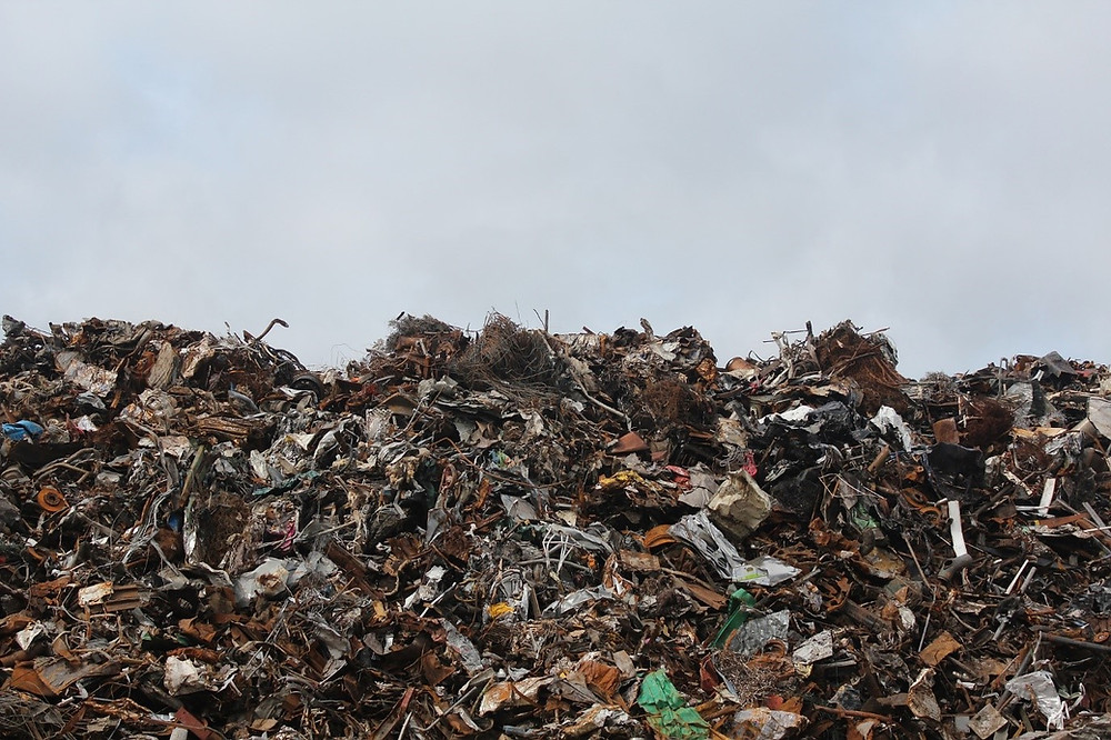 New Zealand Recycling Landfill Waste