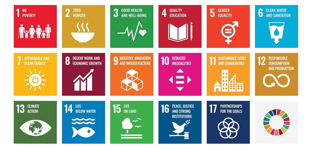 Sustainable Business Development Goals