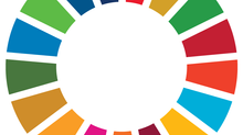 Global Sustainability and Your Organisation: Everything You Need to Know About the SDGs