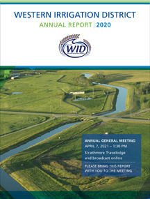 WID Annual Report 2020 Cover SML.jpg