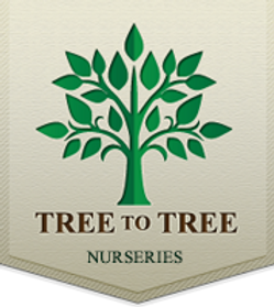 Tree to Tree logo.png