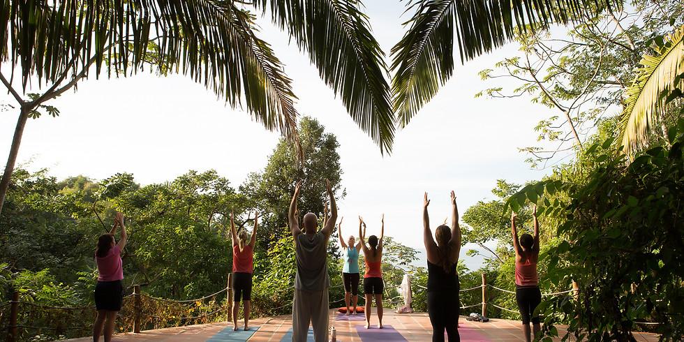 Yoga Meets the Jungle Retreat