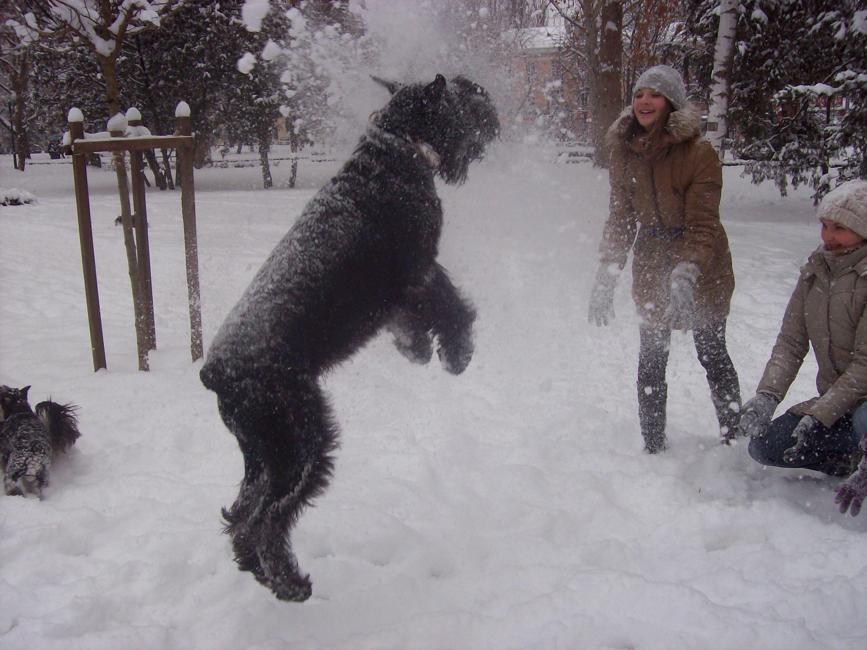 Гара и снег!