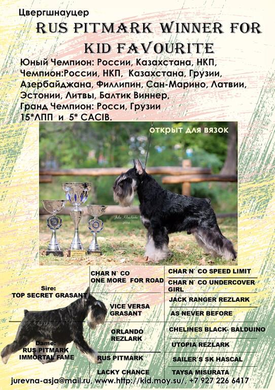 RUS PITMARK WINNER FOR KID FAVOURITE