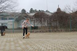 """Занятие """"ЮХ"""", 28.02.2016"""