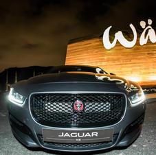 Evento Jaguar Walls