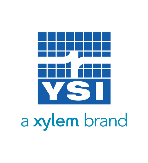 ysi 2.png