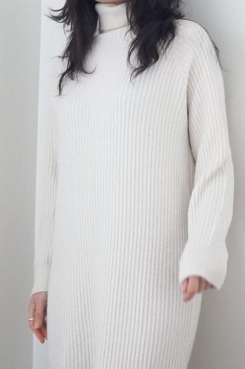 Roll Neck Soft Knit Dress