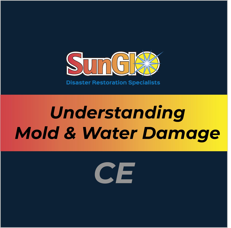 Understanding Mold & Water Damage Issues