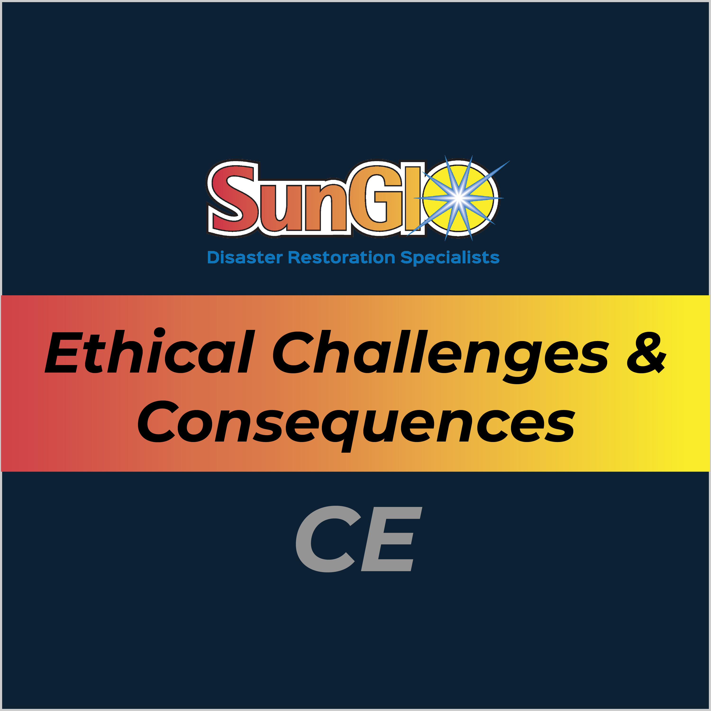Ethical Challenges and consequences