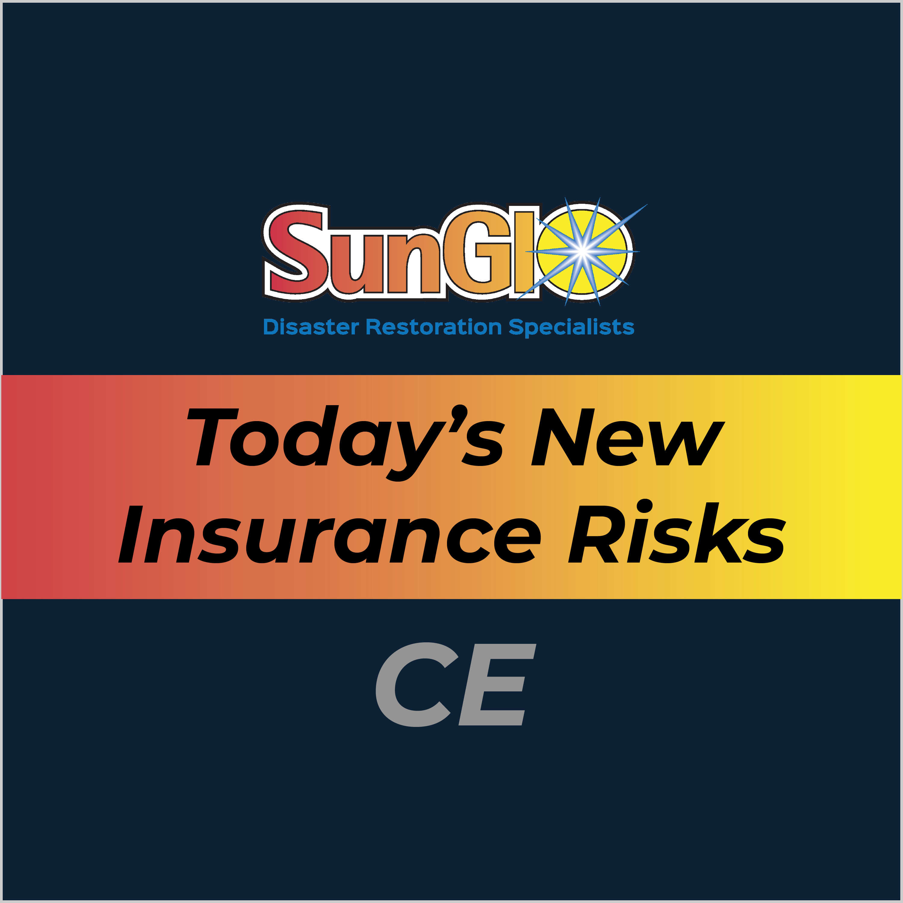 Today's New Insurance Risks
