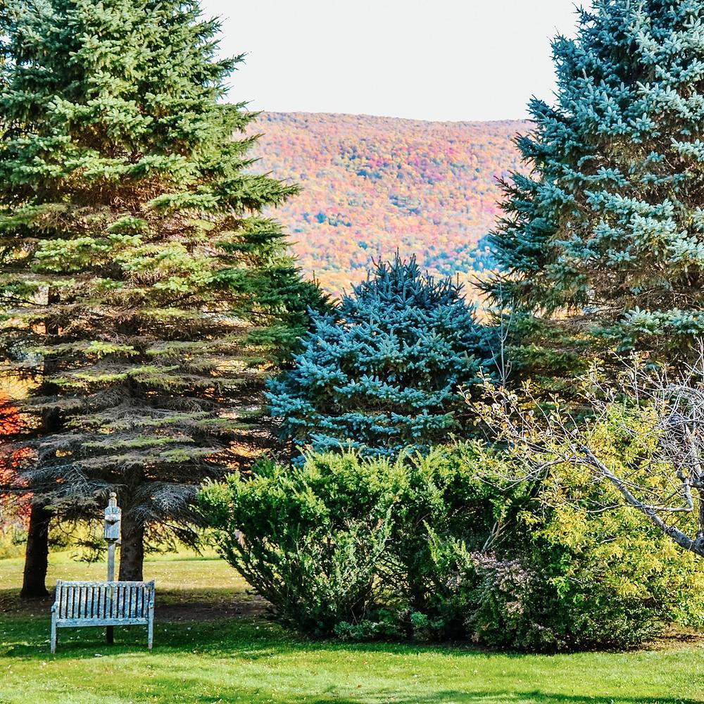 Vermont Home Decor Blog