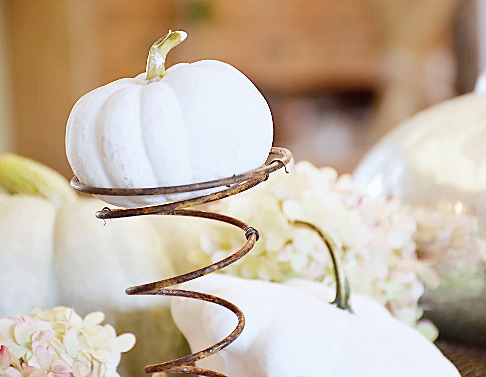 White pumpkin with vintage spring in fall decor.