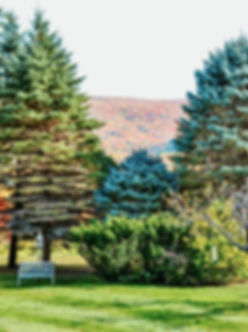 Vermont Home View