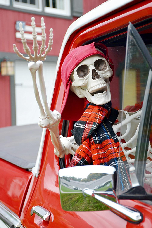 Halloween Skeleton Decorating Ideas