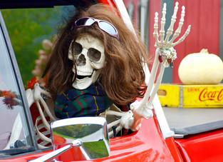 Halloween Skeleton Fun!