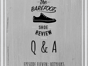 Episode 11 : Q & A with Vaclav from Botyluks