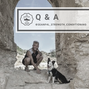 Q & A with: Sean Haber @seanf4l_strength_conditioning
